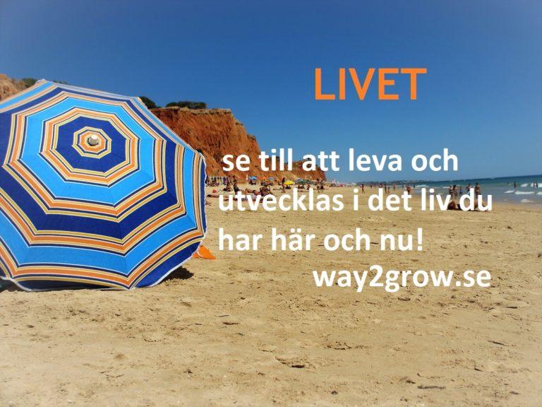 LIVET, se till att leva och utvecklas i det liv du har här och nu!