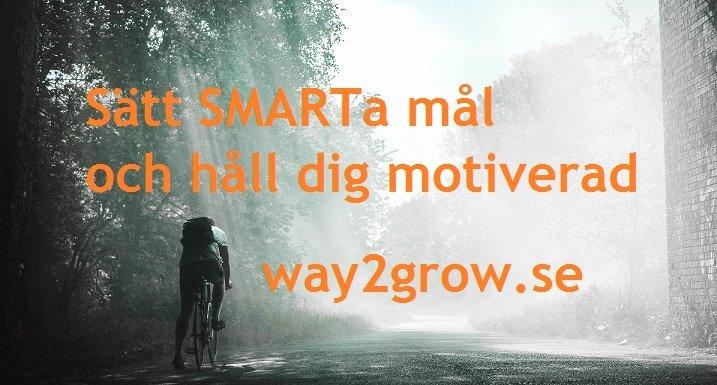 Sätt SMARTa Mål och håll dig motiverad
