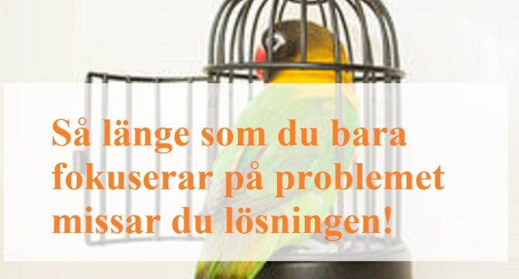 Så Länge som du bara fokuserar på problemet missar du lösningen!