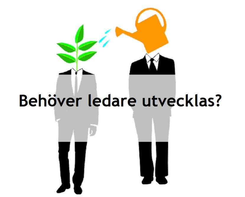 Behöver Ledare utvecklas?